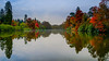 Misty morning (SpectrumLight) Tags: landscape water waterscape pond lake tree autumn reflection england sheffieldpark eastsussex sonya7ii ilce7m2 sony fe1635mmf4zaoss nature scenic blue morning colour