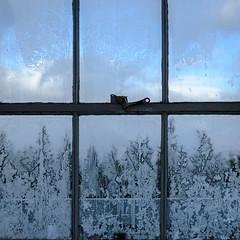 (jtr27) Tags: dscf5119xl square abstract frost frosty window glass pane jtr27 fuji fujifilm xt20 xtrans xf 1855 1855mm f284 lm ois rlmois