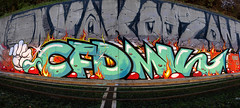 CFDMK Crew (Walls of Belgrade) Tags: belgrade beograd streetart serbia spraypaint wall graffiti mural tramline cfdmk