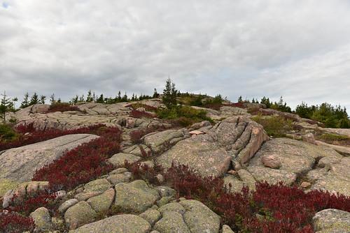 Maine-32