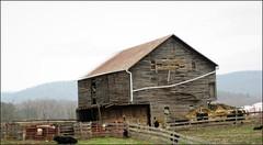 Not to bad (cscott_va.) Tags: barn virginia rockingham county