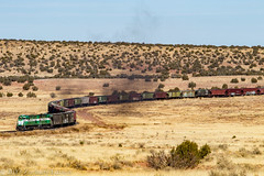 APA 81 South: Snowflake, Arizona (Z-Trains) Tags: bnsf arizona seligman subdivision sub apache railroad apacherailroad seligmansubdivision northernarizona trains train alco mlw c420 c424