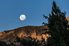 Luna llena en año nuevo (Javier A. Villagra) Tags: luna lunallena piltriquitron atardecer canon t7i 800d moon sky landscape paisaje serenidad paz campo airelibre planta árbol hierba nature