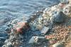 Water stones (Minerbi) Tags: canon5dmarkiii canon 85mm bokeh color water shoreline gravel stones blurry