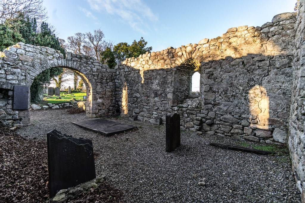 ANCIENT CHURCH AND GRAVEYARD AT TULLY [LAUGHANSTOWN LANE NEAR THE LUAS TRAM STOP]-134563