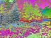 AddModulus_0008 (troutcolor) Tags: convert imagemagick evaluatesequence