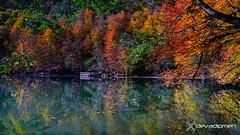 the last colors of autumn / 311217407 (devadipmen) Tags: autumn bolu millipark nationalpark nature naturepark naturephotographer türkiye yedigöller