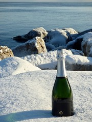 Let me chill that for you (mrsparr) Tags: sparklingwine ontariowine humberbayparkeast beach water rocks boulders shoreline lake lakeontario toronto canada snow ice blue white flickrfriday bestwishes 7dwf sky