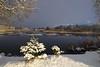 Vaskjala veehoidla (Jaan Keinaste) Tags: pentax k3 pentaxk3 eesti estonia loodus nature harjumaa vaskjalaveehoidla reservoir piritajõgi jõgi river talv winter vesi water lumi snow kuusk spruce
