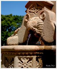 CRW_1425 (mattwardpix) Tags: centenary fountain centenaryfountain christieplace christie park kingstreet newcastle nsw australia matthewward
