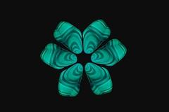 Malachite flower (M Chiara B) Tags: elements malachite 7dwf green black