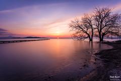 Fermando il tempo (Danilo Agnaioli) Tags: lagotrasimeno tramonto natura acqua alberi inverno umbria italia rosso