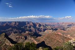 Grand Canyon, Arizona, US August 2017 499 (tango-) Tags: grandcanyon arizona us usa america united states