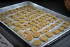Doggie Cookies (✿✿What A Gorgeous Day!✿✿) Tags: tray cookies doggie