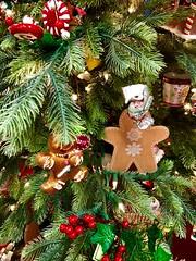 "If It Doesn't Snow On Christmas (EDWW day_dae (esteemedhelga)™) Tags: christmastide christmastime merrifield fairoaks gainesville merrifieldgardencenter holiday christmas ornaments holidaydecor nativity cheer holidayseason happyholidays seasongreetings merrychristmas stockings christmastrees wreath snowflakes santa santaclaus stnicholas snowglobe snowman reindeer jolly angels ""northpole""sleighride""holly""christchild""bellscarolerscarolingcandycane"" gingerbread garland elf elves evergreen feliznavidad ""giftgiving"" goodwill icicle jesus ""joyeuxnoelkriskringlemangermistletoenutcrackerpartridgepoinsettiarejoicescroogesleighbells tinsel yule yuletide bethlehem hohoho seasonal trimmings illuminations twelvedaysofchristmas thischristmas themostwonderfultimeoftheyear peace peaceonearthwinterwonderlandxmasbaubledecember25christmaseve esteemedhelga edww daydae"