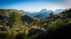 Hiking in Puig de Tossals Verds, Mallorca (throzen) Tags: mallorca majorca spain europe canon eos 700d landscape view views island scenery scenic blue mountain mountains valley hills peaks clear skies sky rocks grass trees hiking summer winter