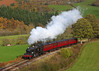 Garth Y Dwr (Treflyn) Tags: gwr great western large prairie 262t 5199 steam autumn colours garthydwr llangollen railway recreations don bishop photo charter published railways illustrated