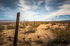 Miles of Fence (BP3811) Tags: 2017 arizona blue canyon december safford tripp trippcanyonroad barbed desert dirt fence fencing landscape post road sand scenic sky wire
