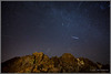 Geminids over Joshua Tree 5824+11 (maguire33@verizon.net) Tags: geminids joshuatreenationalpark joshuatree meteorshower nightsky stars yucca