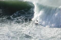 XII Punta Galea Challenge 2017 (Txaro Franco) Tags: xiipuntagaleachallenge2017 2017 galea lagalea puntagalea surf campeonato olasgrandes 30dediciembre campeonatodesurfdeolasgrandes olasde6metros olatuhandiak bizkaia vizcaya euskadi cantábrico mar itsasoa kantauri espuma see waves surfer surfista deporte acuático basquecountry paysbasque