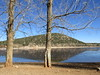 Trees at shoreline, reflections in Daït Aoua, Morocco (Paul McClure DC) Tags: morocco maroc almaghrib jan2017 middleatlas daïtaoua ifraneprovince lake scenery