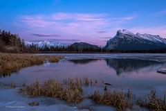 Vermillion Lake Sunset (Margarita Genkova) Tags: tranquility scenic scenery colors winter snow landscape nature vermillionlakes sunset rundlemountain reflection rockymountains canada alberta banffnationalpark