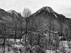 Winter (drugodragodiego) Tags: saone tioneditrento trento trentino italy inverno snow neve landscape paesaggio blackandwhite blackwhite bw biancoenero pentax pentaxk1 k1 pentaxda60250mmf4edifsdm smcpentaxda60250mmf4edifsdm