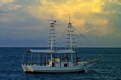 The boat (gerudebruno) Tags: boat barco sunset por do sol mar praia buzios rio de janeiro entardecer nuvem ave bird nature ngc fantastic