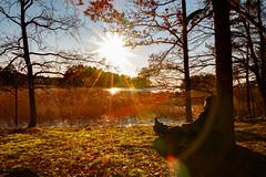 Recreation (Explore) (Cajofavi) Tags: fs180107 rekreation fotosondag kalmar sweden sunshine sun water trees selfie