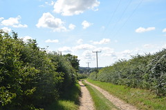 Gong Lane (Worthing Wanderer) Tags: norfolk summer sunny farmland coast seaside nelson holkham burnham hero august