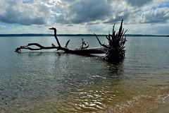 DSC_0017 (RUMTIME) Tags: coochiemudlo coochie clouds beach australia queensland