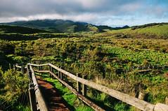 Terceira Island, Azores (Gail at Large | Image Legacy) Tags: 2017 azores açores ilhaterceira portugal terceira gailatlargecom