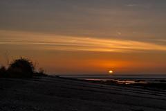 Lone Star (@bill_11) Tags: pegwellbay unitedkingdom isleofthanet sunrise kent england
