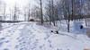 Parc du Lac Beauchamp en Hiver, Gatineau, Canada - 4201 (rivai56) Tags: gatineau québec canada ca pause sur le banc sous la neige break bench under snow parcdulacbeauchampenhiver