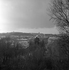 Annedal (rotabaga) Tags: sverige sweden göteborg gothenburg svartvitt lomo lomography lubitel166 tmax400 blackandwhite bw bwfp twinlens