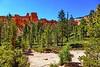160531-TZ-11 - Bryce Canyon (b_kohnert) Tags: landscape brycecanyon utah usa