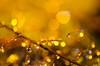 Light (Thomas P. Photography) Tags: jaune water drop drops bokeh collide colliding red blue yellow splash pluto trigger shot light flash color liquid droplet transparent eau goutte gouttes collision rouge bleu photo lumière goutelette ciel flou