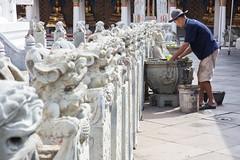 Old man working on maintenance of plants in Wat Arun - Bangkok (Tiziana de Martino) Tags: wat arun thailand bangkok city temple places world travel people travelling visit