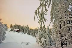 I Wish You A Merry Christmas and Happy new year. Je te souhaite Joyeux Noël 2017 et Bonne Année 2018 .08.12.12, 16:42:05. No. 1353. (Izakigur) Tags: switzerland svizzera lasuisse lepetitprince thelittleprince ilpiccoloprincipe helvetia liberty izakigur flickr feel europe europa dieschweiz ch musictomyeyes nikkor nikon suiza suisse suisia schweiz suizo swiss سويسرا laventuresuisse myswitzerland landscape alps alpes alpen schwyz suïssa luz lumière light licht ضوء אור प्रकाश ライト lux światło свет ışık d700 nikond700 nikkor2470f28 neuchatel cantondeneuchâtel