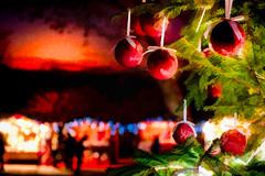 Buon Natale (agoralex) Tags: christmastime agoralex morimondo christmastree christmasmarkets