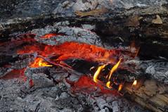 Bonfire in winter (Kira Pichano) Tags: bonfire winter frost forest firewood coal heat sparks bask mountains caucasus костер зима мороз лес дрова уголь тепло искры греться горы кавказ