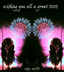 2018 (Sonja Parfitt) Tags: fireworks englishbay mirror