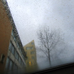 Münster today (Bernhardt Franz) Tags: münster today sturm storm windstorm facades buildings glass trees sky himmel colour windy stürmisch regnerisch rainy wet architecture windows
