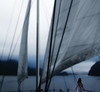 Discovering a New World (coollessons2004) Tags: sea pacificocean sloop ship sound bay woman mystical mist newzealand doubtfulsound