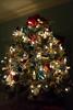 DSC03847.jpg (imfaral) Tags: biltmore christmas