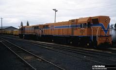 2945 D1563 D1562 Manjimup Yard 11 April 1982 (RailWA) Tags: railwa philmelling westrail 1982 d1563 d1562 manjimup yard