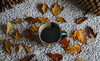 Coffee in Autumn (yazanrahhal1) Tags: coffee drink cup mug sony a7 samyang 50mm f14 indoor leaves autumn fall season pine perspective photography