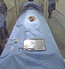 Penis (Leifskandsen) Tags: penis genetalis operation surgery balls pikk bed blue camera leica living leifskandsen leif skandsenimages scandinavia oslo museum skandsen