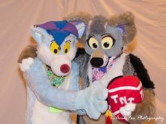 _DSC1401 (Acrufox) Tags: midwest furfest 2017 furry convention december hyatt regency ohare rosemont chicago illinois acrufox fursuit fursuiting mff2017 menagerie fursuitsaturday