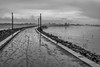 on track (stevefge) Tags: 2017 hoogwater nijmegen nevengeul water waal winter grey grijs mud mist road path spiegelwaal nederland netherlands nl nederlandvandaag gelderland reflectyourworld zw zwartwit bw blackandwhite monochrome mono landscape